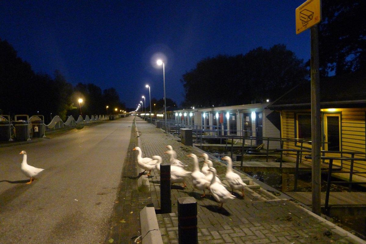 De voormalige prostitutiezone aan het Zandpad inrichten als passantenhaven, zegt Charles Chamboné. Foto: Ton van den Berg