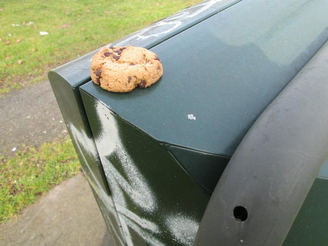 Cookie-crisisdagboek (3)