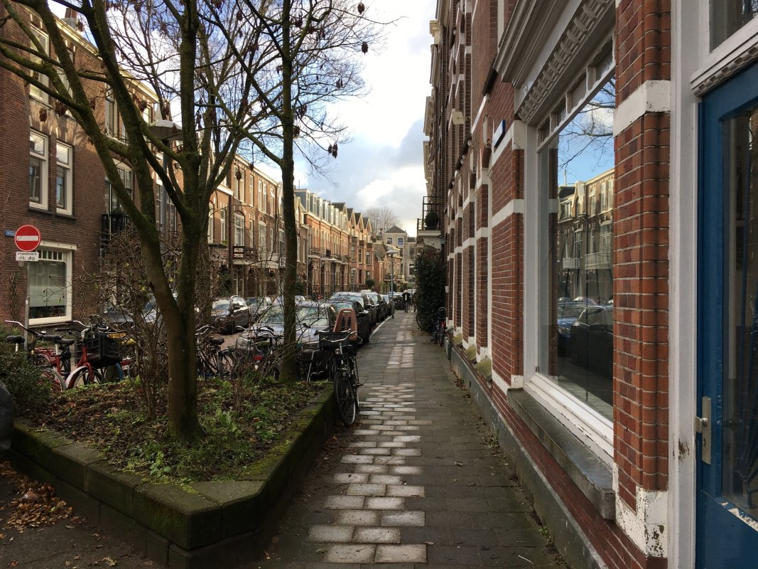 De Bellamystraat. Foto: Dik Binnendijk