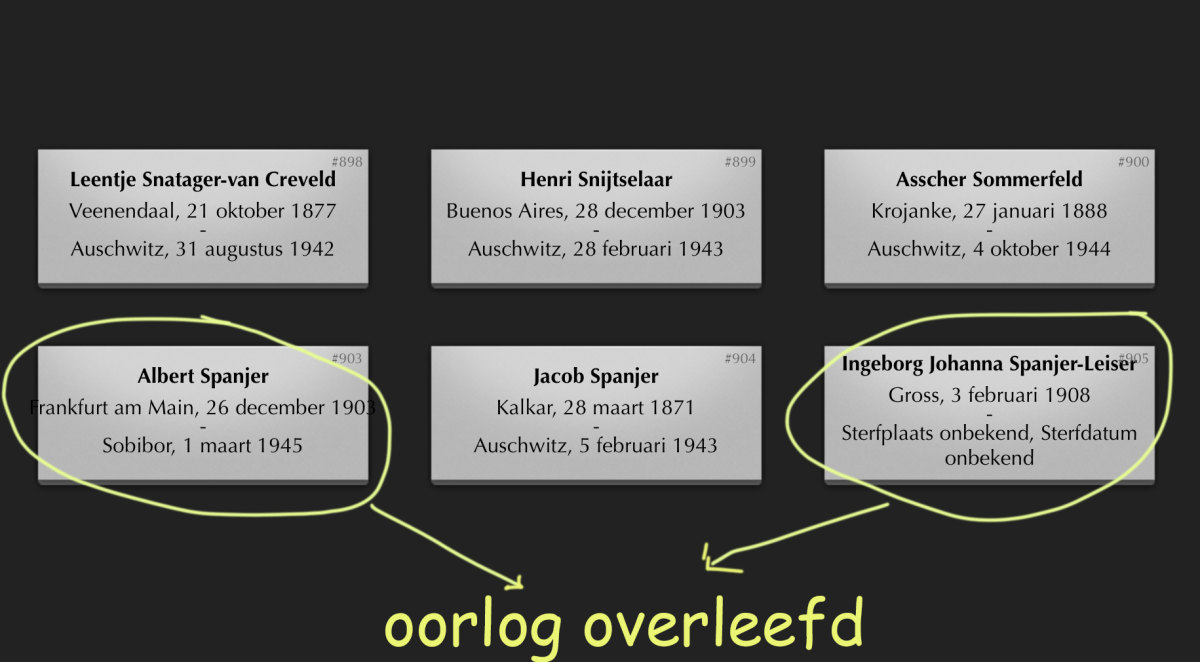 Twee van de 82 fouten die al jaren bekend zijn. Screenshot: beladentreinen.nl - bewerking: JT