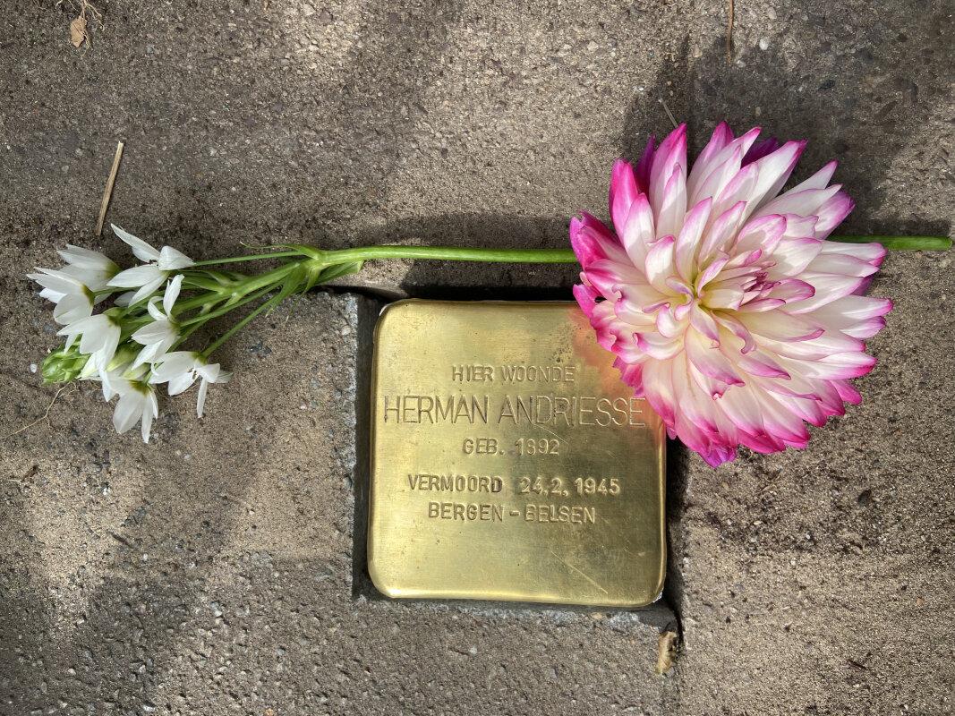 Voor zijn voormalige huis op Van Speijkstraat 12 werd de struikelsteen gelegd. Foto: Jim Terlingen