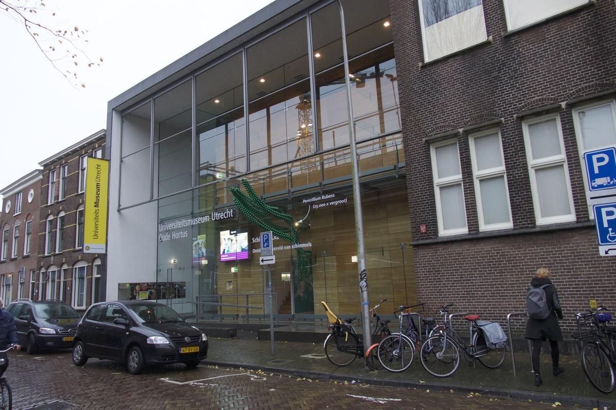 De gevel van het Universiteitsmuseum moet wijken voor horeca. Foto: Ton van den Berg